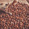 conservare caffè macinato